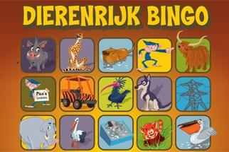 header-bingokaart-nieuw85