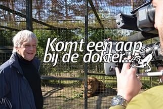nieuws-start-nieuw-seizoen-komt-een-aap-bij-de-dokter-dierenrijk