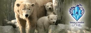 dierenrijk-diamond-themepark-awards