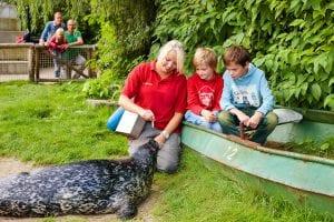 kinderfeestje zeehond dierenrijk