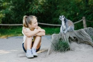 Dierenrijk meisje zitten naast maki