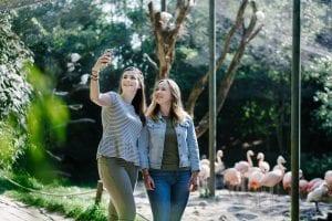 Meisjes foto selfie